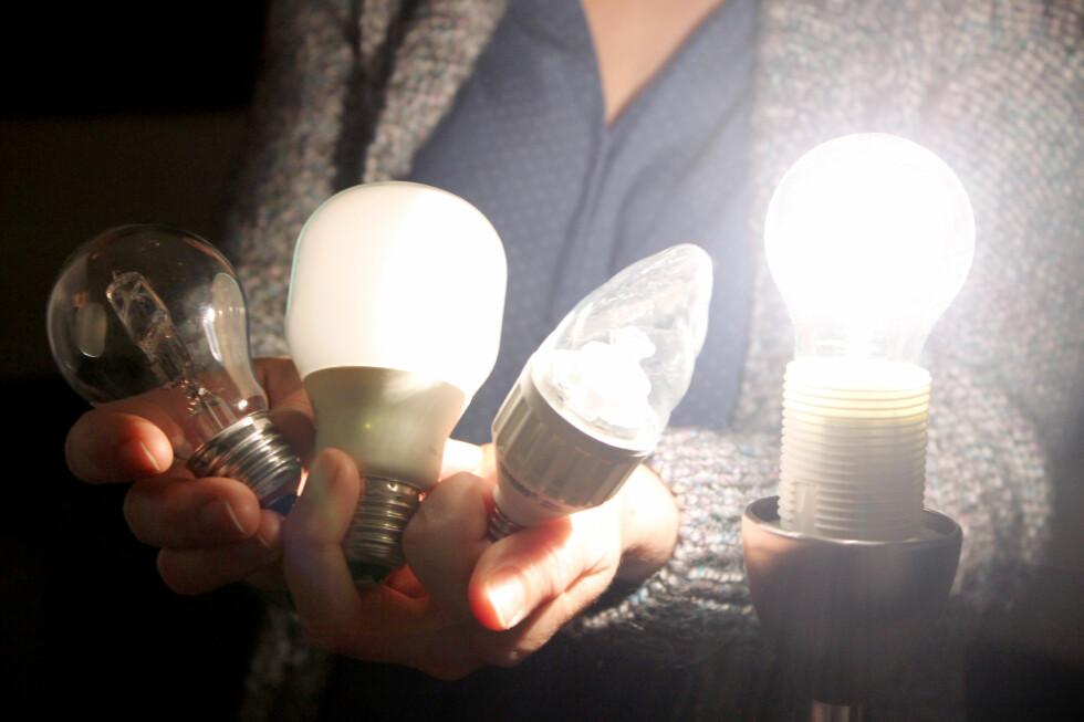 HVA SKAL DU VELGE? LED, halogen eller sparepære? De ulike lampene har forskjellige egenskaper - du kan finne fordeler, ulemper og prisforskjeller i vår lampeguide nedenfor. Foto: OLE PETTER BAUGERØD STOKKE