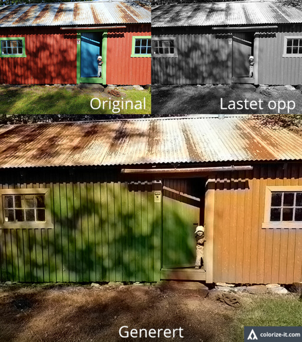 image: Fargelegger sort/hvitt-bilder automatisk