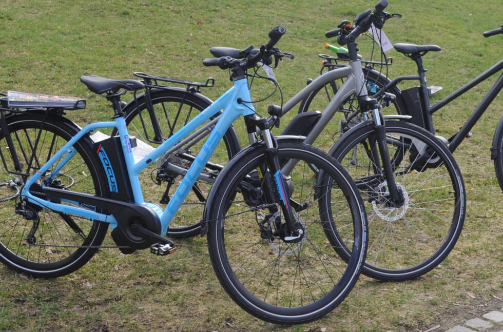 VALGETS KVAL: Det har etter hvert blitt mye å velge i blant elsykler. Det gjelder å finne den sykkelen som passer best til ditt bruk. Foto: TORE NESET