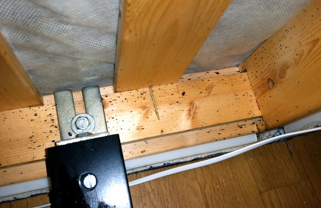 HER VIL DU IKKE BO: Ta en sjekk under senga når du sjekker inn på et nytt sted. Dette er spor etter veggedyr. Her vil du ikke bo! Foto: TOR ILJAR/DOGPOINT