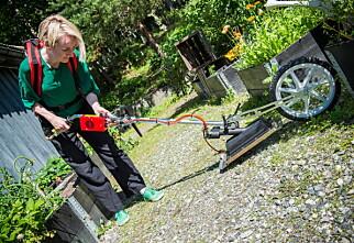 Slik fjerner du ugress i hagen