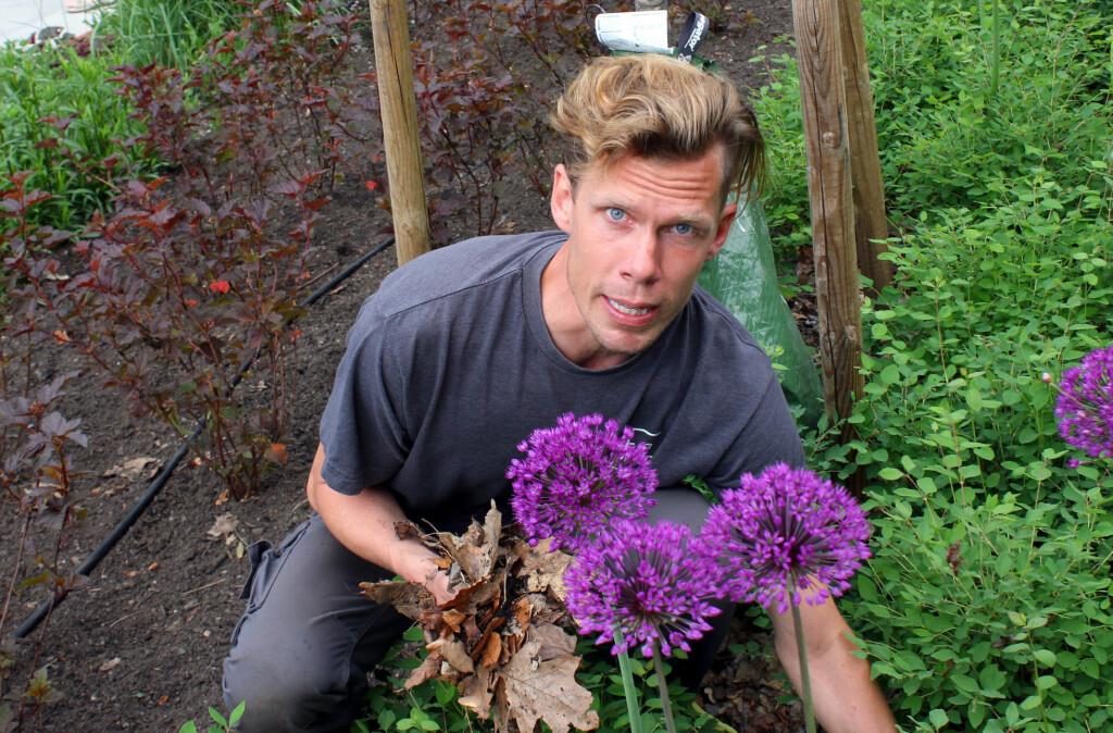 <b>- LA DET LIGGE!</b> Du rydder vel ikke løvet bort fra bedet? - La det ligge, det er kjempebra for jorda, og plantene blir så glade, uttaler Filip Ihrsen, gartner og avdelingsingeniør ved Norges miljø- og biovitenskapelige universitet (NMBU).  Foto: KRISTIN SØRDAL