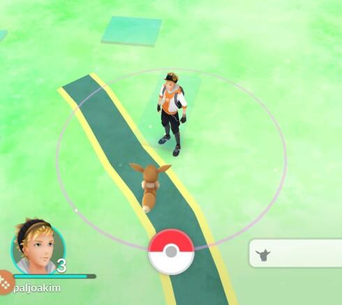 FINN DEM: Ved å trykke på feltet nederst til høyre, kan du se hvilke figurer som er i nærheten av deg og hvor langt de er unna. Foto: PÅL JOAKIM OLSEN