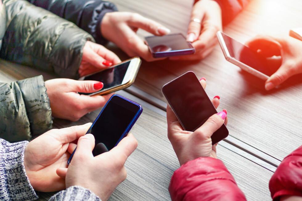 EN JUNGEL: Det finnes veldig mange telefoner på velge blant. I denne artikkelen har vi prøvd å skille klinten fra hveten. Foto: SHUTTERSTOCK/NTB SCANPIX