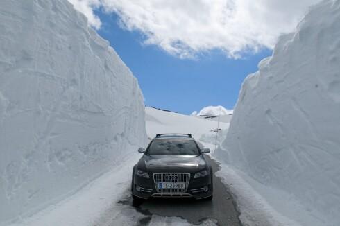 TIDLIG SESONG: Også dette er tatt langs Tindeveien, på vei til Turtagrø.  Foto: Stig Tronvold / Samfoto / NTB Scanpix