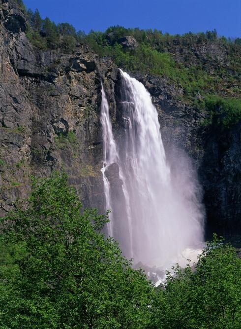 FEIGUMFOSSEN: Fossen er 218 meter høy, og kan ses fra den nasjonale turistveien som går langs Lusterfjorden. Det er også mulig å gå den korte turen opp til Fossen.  Foto: Samfoto/NTB Scanpix
