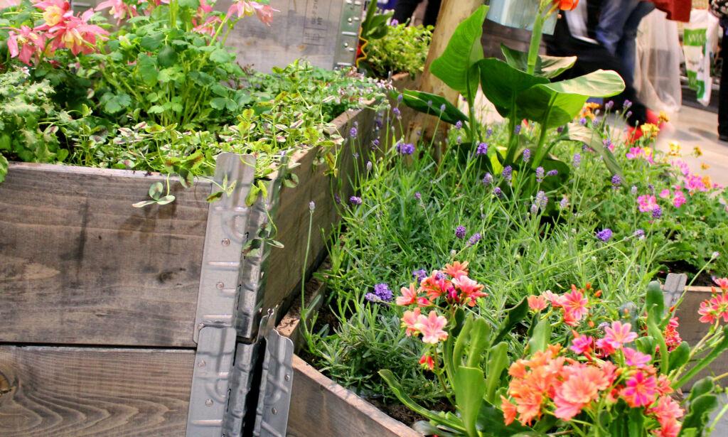 image: 7 tips til smart planting i pallekarm
