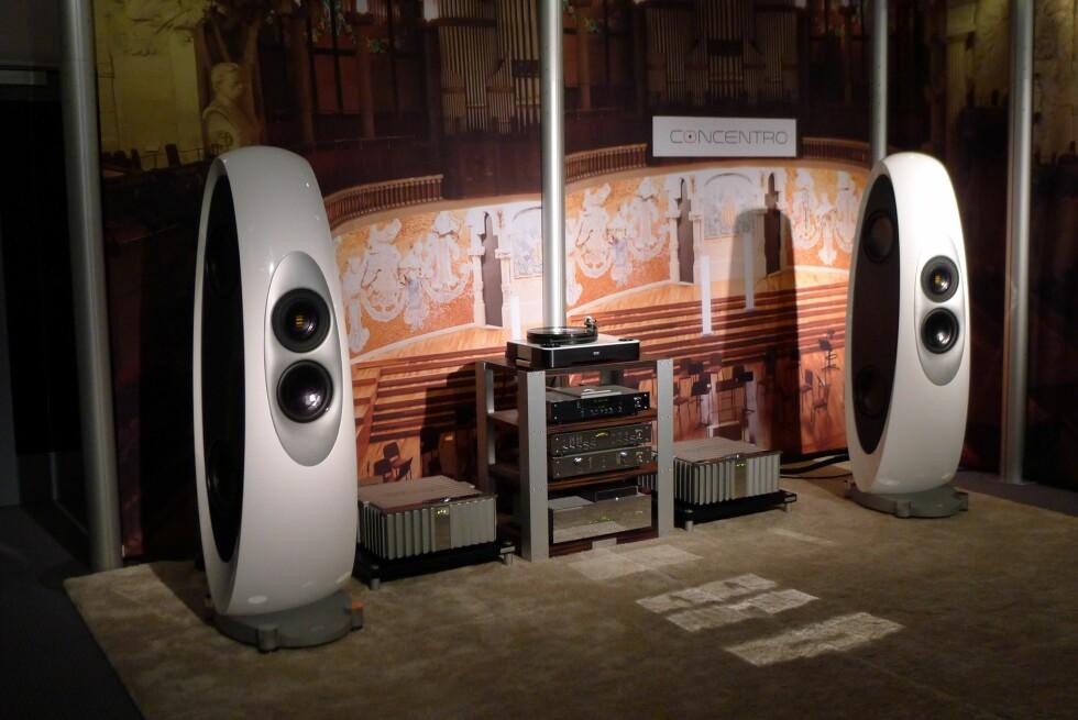 DYR MUSIKKGLEDE: Disse høyttalerne fra tyske Elac har en prislapp på 60.000 euro, om lag 560.000 kroner. Og så trenger du endel utstyr til store lapper i tillegg... Foto: TORE NESET