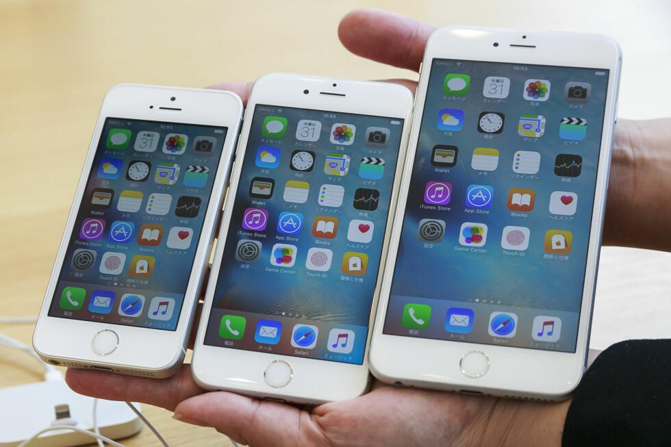 <b>VALGETS KVALER?</b> Apple har nå en iPhone i liten, medium og stor. Men hvilken av dem passer passer best for deg? Og skal du velge den gamle eller nye modellen? Mye eller lite lagringsplass? Og kanskje viktigst: Hvilken farge? Foto: AFLO / SPLASH NEWS / SCANPIX