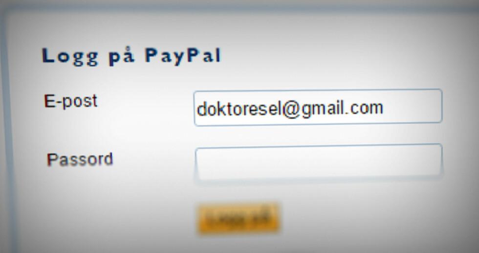 SKREMMENDE RASKT: Betaler du med Paypal, er dette alt du trenger å fylle inn i kassa. Det går nesten for raskt.  Foto: OLE PETTER BAUGERØD STOKKE