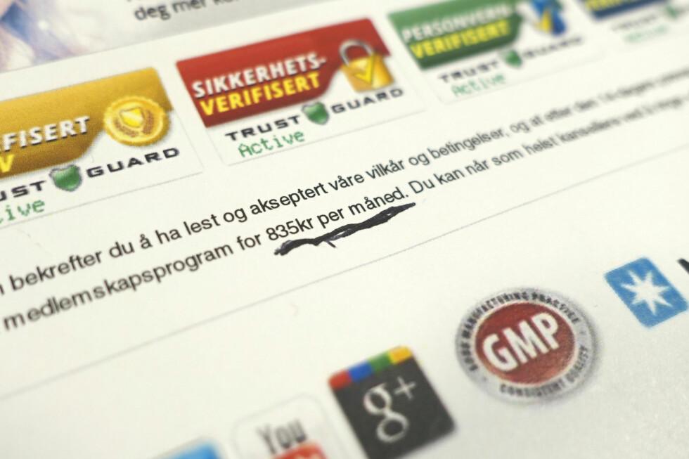 KAN BLI DYRT: Det er nok ikke alle som leser gjennom vilkårene før man bestiller ting på internett. Av og til kan det virkelig straffe seg å la være. Foto: AKSEL RYNNING
