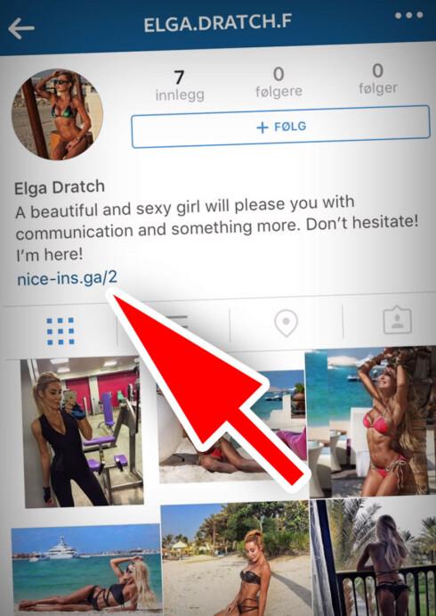 IKKE TRYKK HER: De falske Instagram-kontoene vi har sett har ofte hatt en lenke under bioen sin. Dette kan være inngangsporten til en svindel, så hold deg unna. Foto: OLE PETTER BAUGERØD STOKKE