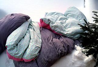 Slik vasker du dyner, puter, møbler og tepper