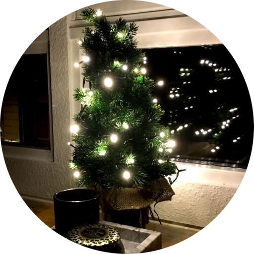 ØNSKER SEG IKKE: Julepynt når jula allerede er på hell. Foto: OLE PETTER BAUGERØD STOKKE