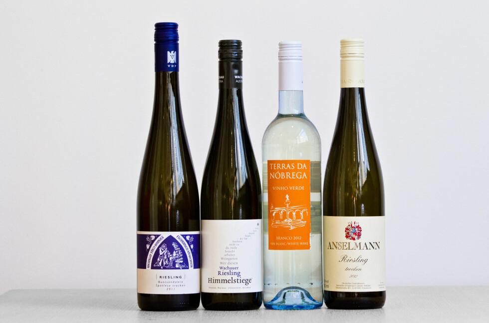 VANSKELIG Å SKILLE: «Alle» har meninger om vin. Men i kontrollerte tester kan selv ikke ekspertene smake forskjell. Heller ikke på hvit- og rødvin. Foto: VEGARD GRØTT/NTB SCANPIX