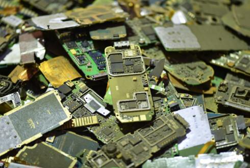 GJENBRUK: Kretskort fra gamle mobiltelefoner hos resirkuleringsanlegget til ALBA i Tyskland. Foto: Uwe Anspach/DPA
