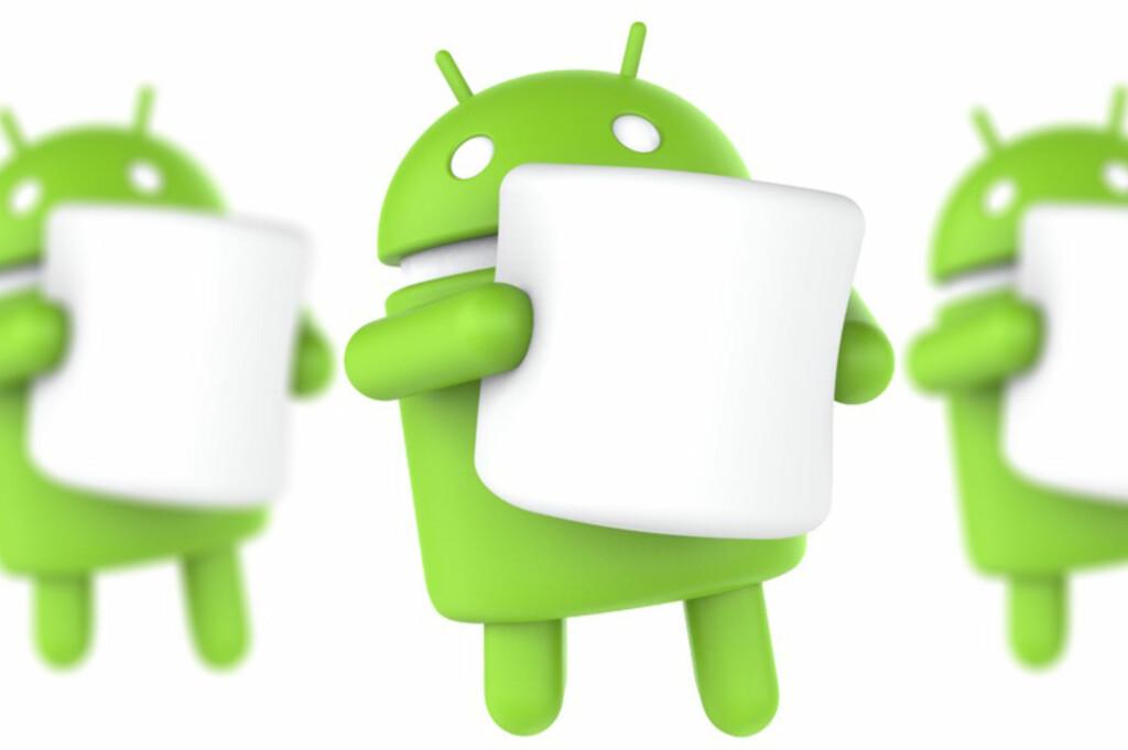 <strong>FÅR DU?</strong> Nå har den nye Android-versjonen ankommet. Foto: GOOGLE/PÅL JOAKIM OLSEN