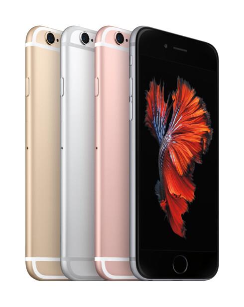 MANGE ALTERNATIVER: Ikke bare får du Apples nye iPhone i to størrelser, den kommer i tre forskjellige versjoner med tanke på lagringskapasitet samt fire forskjellige farger. Foto: APPLE