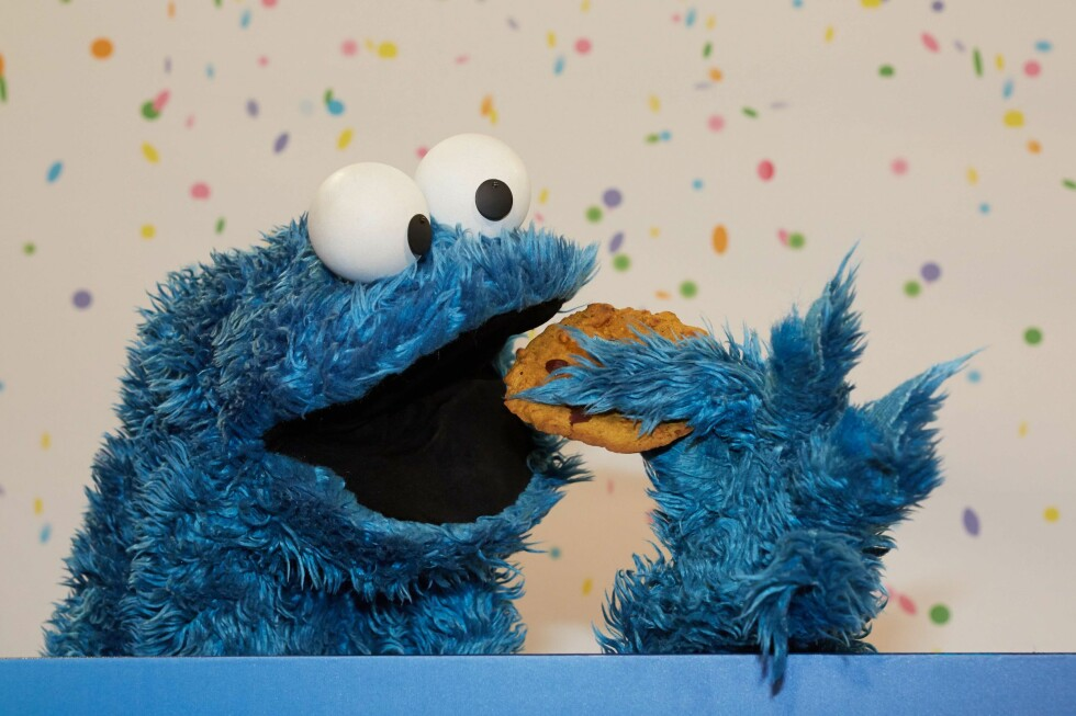 ET MONSTER: Gjennom «cookies», ofte kalt informasjonskapsler på det litt kjedeligere språket vi kjenner som norsk, kan selskaper servere deg annonser de tror er aktuelle. Men de er oftere totalt uaktuelle. Foto: GEORG WENDT / AFP PHOTO / NTB SCANPIX