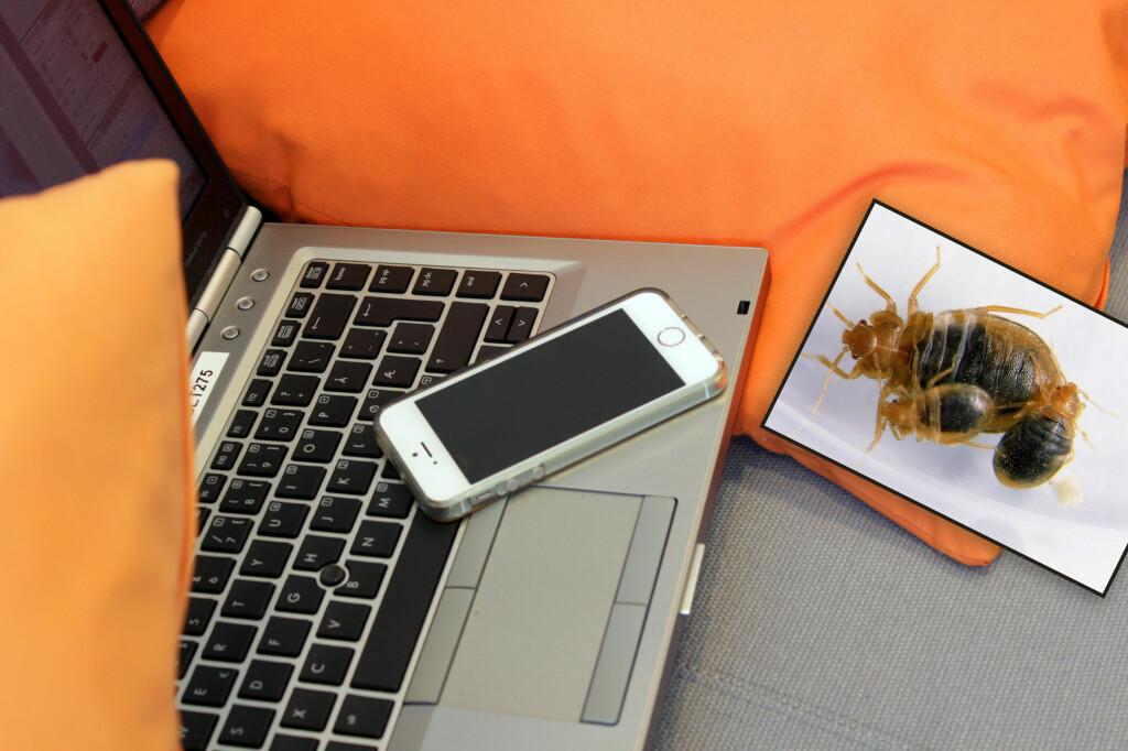 HAR DU SJEKKET HER? Veggedyr liker seg godt der det er varmt, som i tastaturer eller inni mobildekselet - og bruker du dette i senga på hotell, kan de fint bli med deg hjem.  Foto: KRISTIN SØRDAL