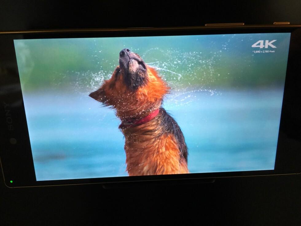 SKARPT: Detaljrikdomen når nye nivåer med Z5 Premium Foto: BJØRN EIRIK LOFTÅS