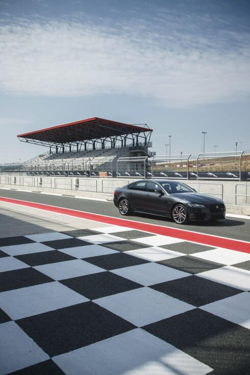 RACER: Vi fikk også teste en XF S- med 380 hester og firehjulstrekk på racerbanen Circuit Navarra. Under slike forhold får Jaguar virkelig vist hva som bor i bilen. Foto: JAGUAR