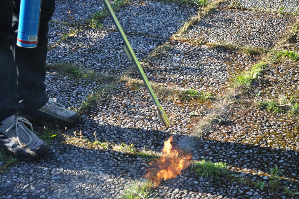 <B>FYR OG FLAMME</b> Du skal egentlig ikke brenne ugresset, men det er vanskelig å la være. Husk å holde god avstand, både til deg selv og huset ditt! Foto: IVER NESET