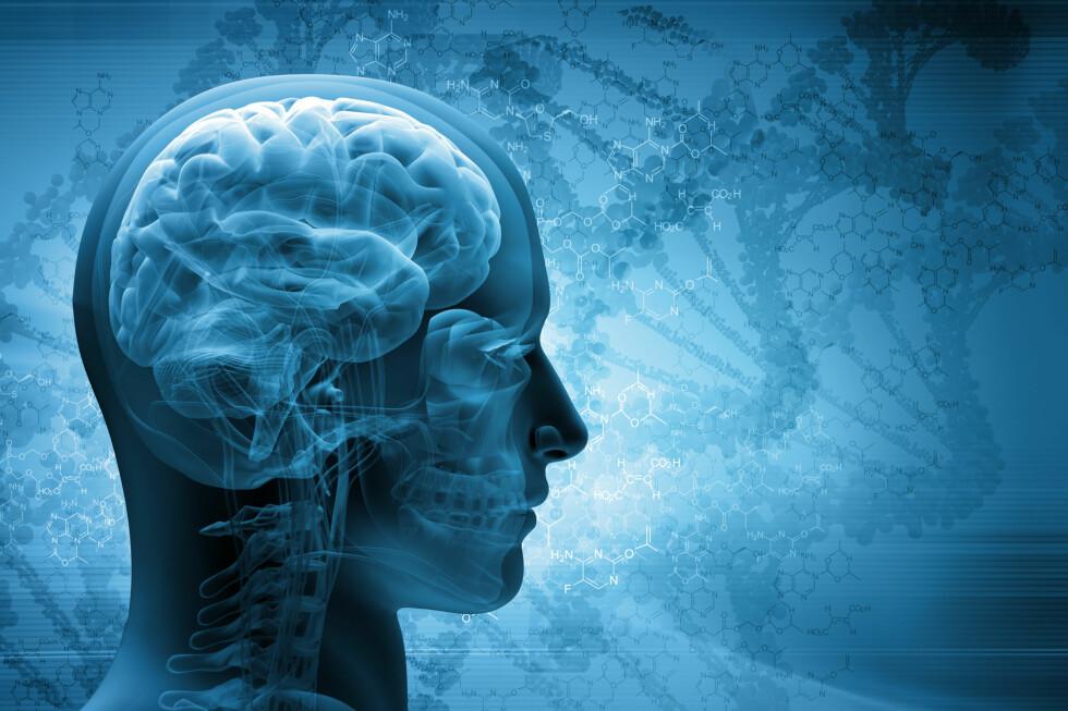 BØR HOLDES I FORM: Å trene hjernen kan redusere risikoen for demens –her er fem matteapper å bryne seg på i ferien. Foto: SCANPIX