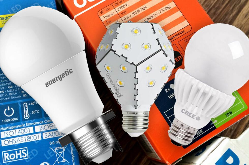 VERDENS BESTE LED-LAMPER: Vinnerne av kåringen av verdens beste og mest energieffektive LED-lamper. Foto: SEAD/KRISTIN SØRDAL