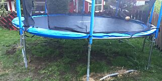 image: Lider hagen din også av trampoline-syken? Dette kan du gjøre