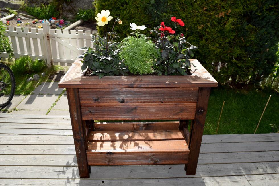 <B>FIN!</B> Vi stiftet fast en barkduk inni kassen, fylte den med Leca-kuler og   blomsterjord og satte inn tre fine blomster.