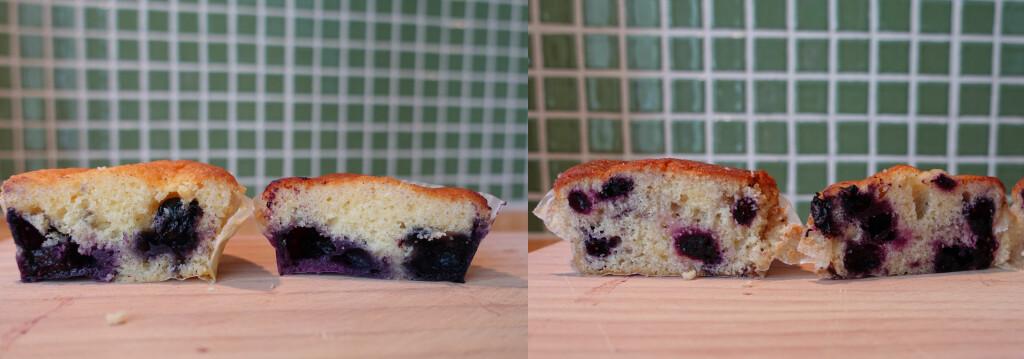 SE FORSKJELLEN: (Fra venstre:) Hageblåbær med og uten mel på bærene, så frosne bær rett fra fryseren - og som har tint på benken. Foto: ELISABETH DALSEG