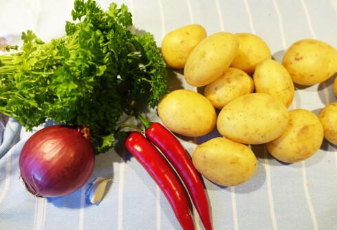 HOT: Vi stusset første gang vi hørte hva som var i denne potetsalaten, men det passer perfekt sammen. Foto: ELISABETH DALSEG