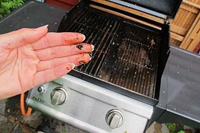 image: - Ikke vask grillen for ofte