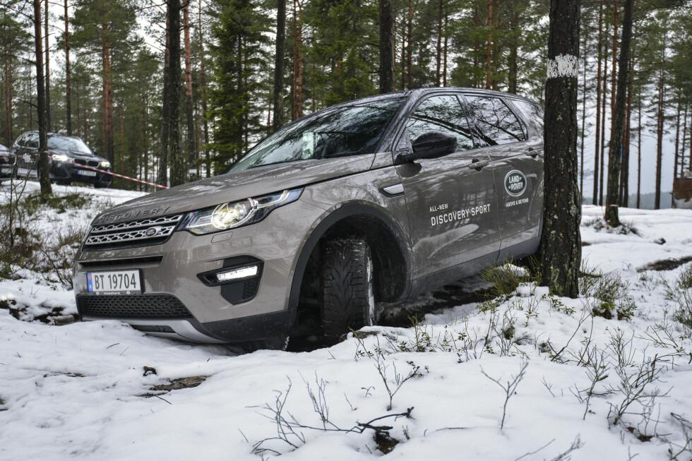 UT I SKOGEN: Land Rover bygger biler som takler terreng. Discovery Sport er ikke noe unntak. Foto: JAMIESON POTHECARY