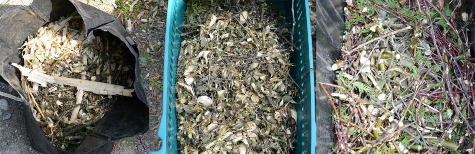 KOMPAKT: Kvistkvernen gjør bortkjøring av kvist og greiner langt enklere. Foto: BRYNJULF BLIX