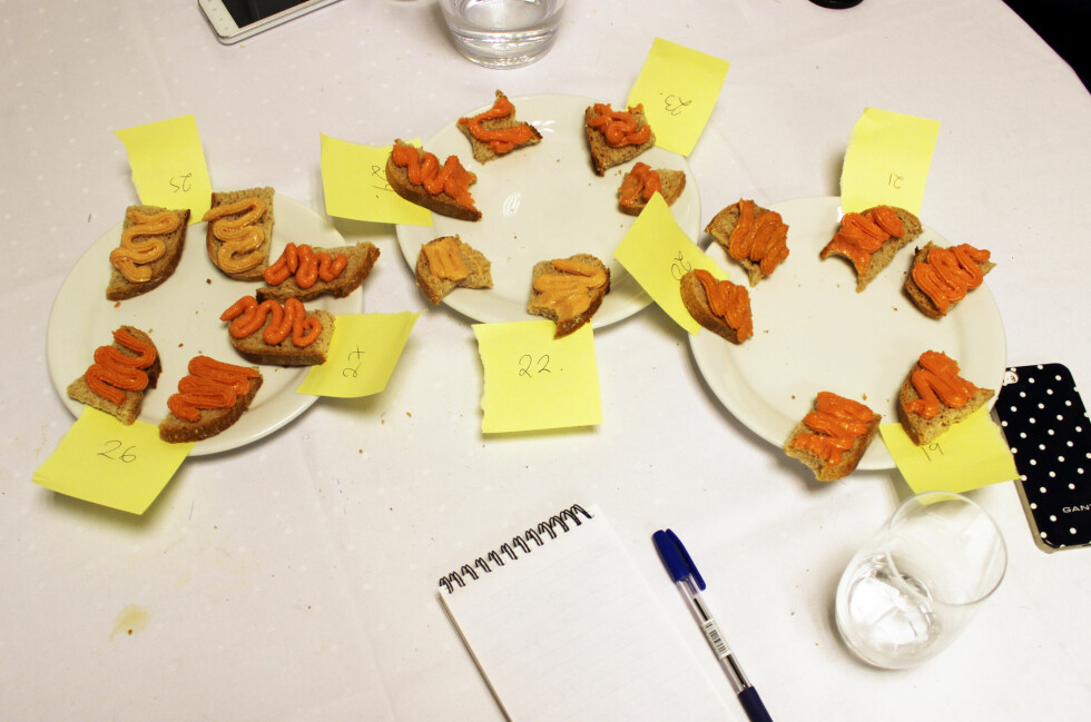 STOR PÅLEGGSTEST: Dinside har testet smørbart pålegg; leverpostei, smøreost, makrell i tomat og kaviar. Foto: ELISABETH DALSEG