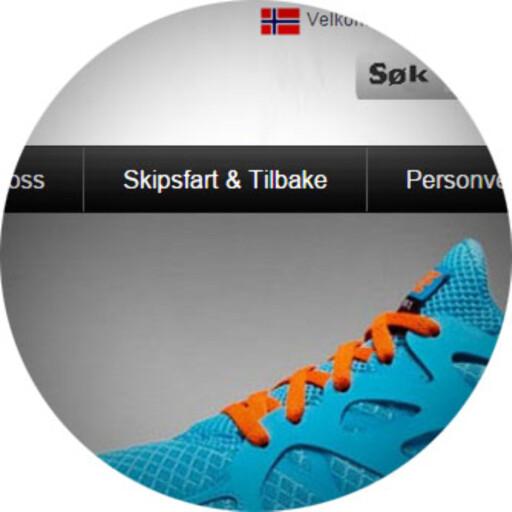 DÅRLIG SPRÅK: Her er et eksempel på dårlig norsk på en nettbutikk som selger piratvarer. «Shipping» har blitt oversatt til «skipsfart».  Foto: OLE PETTER BAUGERØD STOKKE