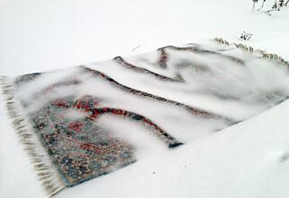 Rens teppene i nysnøen