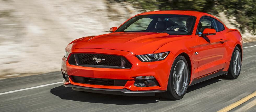 STOR OG BARSK: Det levnes liten tvil om hvilken bil du møter, når Ford Mustang dukker opp.  Foto: CHARLIE MAGEE