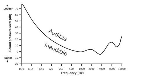 20-ÅRING Hørselen avtar brått ved 16.000 Hz, selv for en ung person. Foto: UNIVERSITY OF SYDNEY