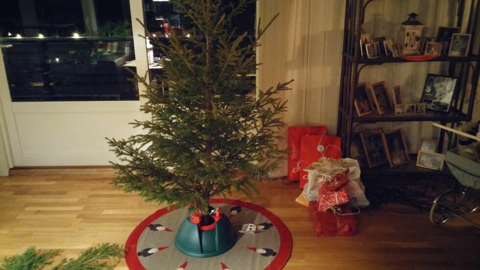 PÅ PLASS:Treet er på plass i foten. Foto: BRYNJULF BLIX
