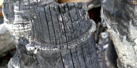 image: Bruk kull som fukt- og luktfuktfjerner
