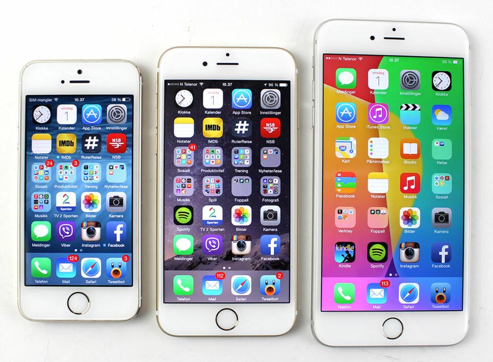 IPHONE-FAMILIEN: Nå i tre størrelser: iPhone 5S, iPhone 6 og iPhone 6 Plus.  Foto: KIRSTI ØSTVANG
