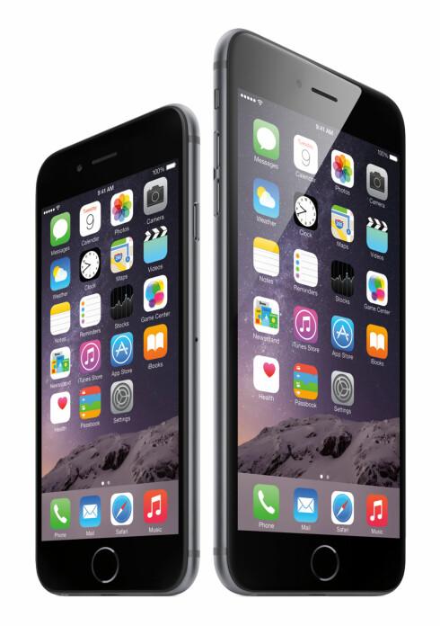 PÅ SEKSERNE: iOS 8 kommer forhåndsinstallert på de nye iPhone-modellene, 6 og 6 Plus. Foto: APPLE