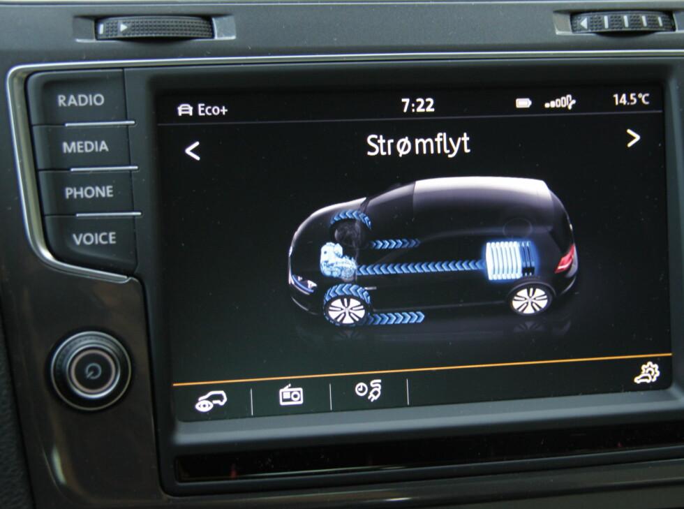 SKJERMVISNINGER: Det finnes mange forskjellige skjermvisninger for strømforbruk og ladediagrammer. Moro i begynnelsen. Foto: RUNE M. NESHEIM