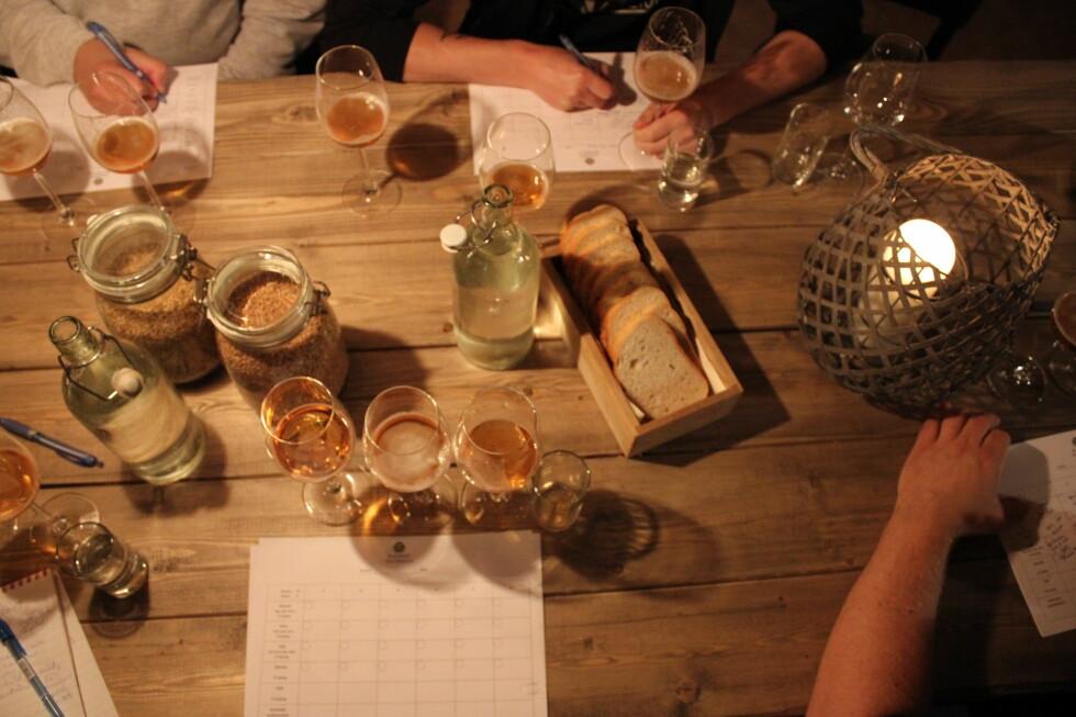 BLINDTEST: Det eneste testerne fikk vite på forhånd var hvilken kategori ølet tilhørte. Foto: ELISABETH DALSEG