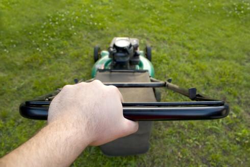 STØRRELSEN: Både størrelsen på plenen, hvor mye busker du har og hvor ofte du klipper bør vurderes før du velger klipper. Foto: ALL OVER PRESS