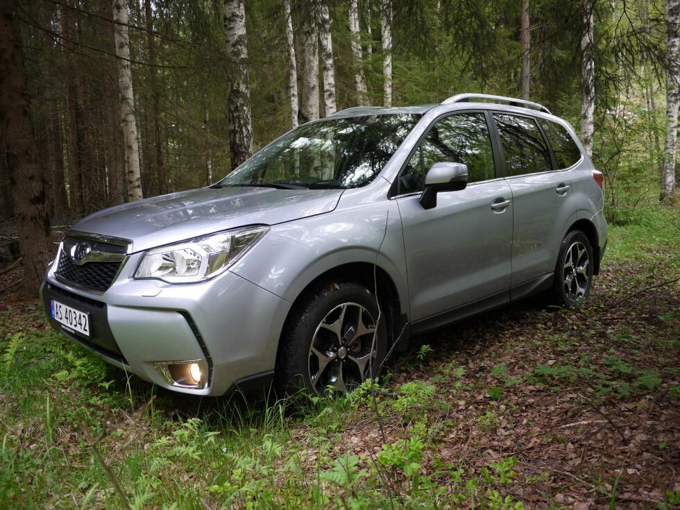 SKOGENS KONGE: Skal du kjøre ut på stien og føle skogens ro, kan en Forester være rette bilen. Foto: LORD ARNSTEIN LANDSEM