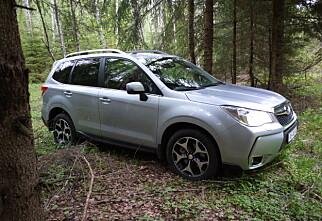 Er Subaru Forester skogens konge?